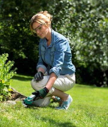 Bosch DIY Akku Gras- und Strauchscheren Set Isio